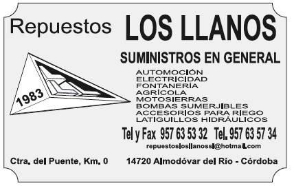 Repuestos Los LLanos.jpg