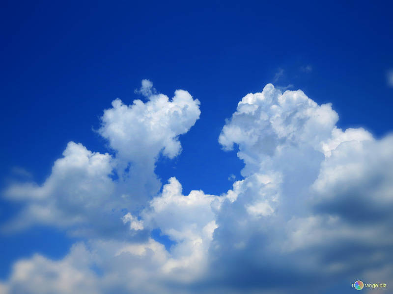 "Yo en ""la nube"" no me meto"