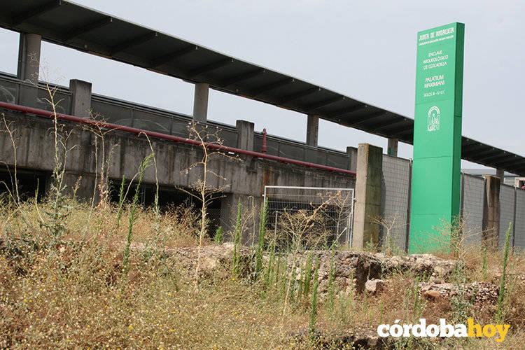 El colectivo Plataforma Por Córdoba alerta del alto riesgo de incendios en Cercadilla