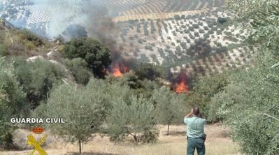 Ganemos quiere que el Ayuntamiento refuerce la prevención de incendios en la Sierra de Córdoba
