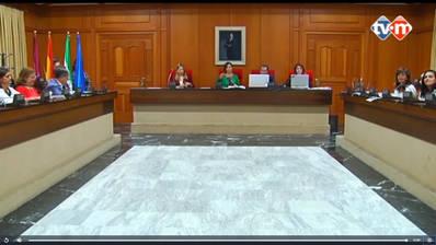 Vídeo: Sesión 13/18 Ordinaria de Pleno Municipal del 9 de Octubre de 2018