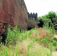 Vecinos alertan del riesgo de incendios que sufren las murallas del Corregidor