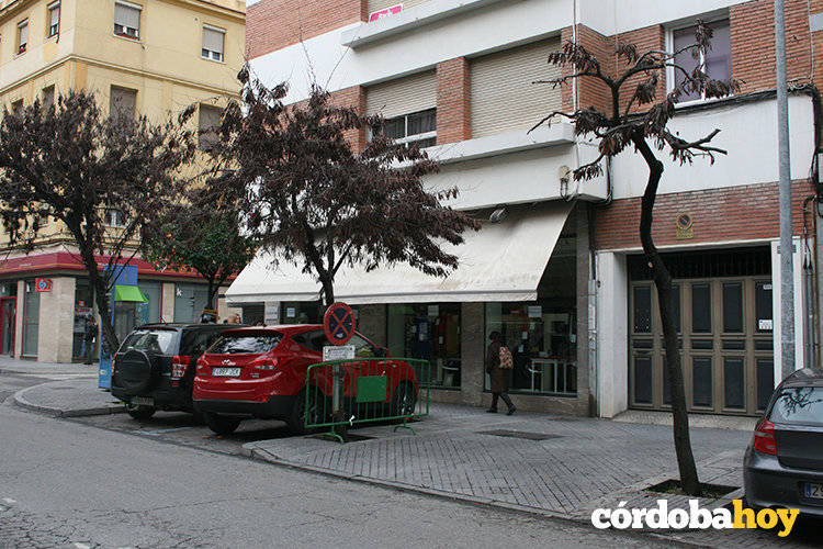 """Vecinos exigen que cese la poda """"salvaje"""" de ciclamores en la calle Antonio Maura"""