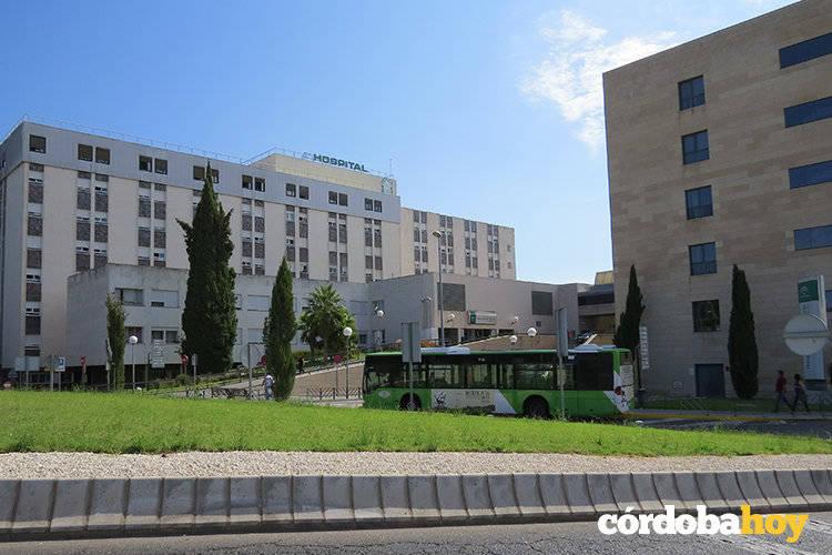 Los vecinos de norte tendrán conexión directa con Reina Sofía por la línea 5 de Aucorsa