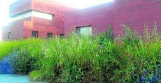 Vecinos del Muriano critican el estado del entorno del ambulatorio