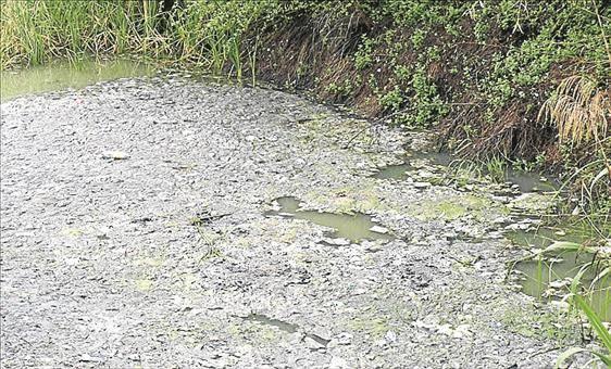 Cuerpos limpios, ríos sucios