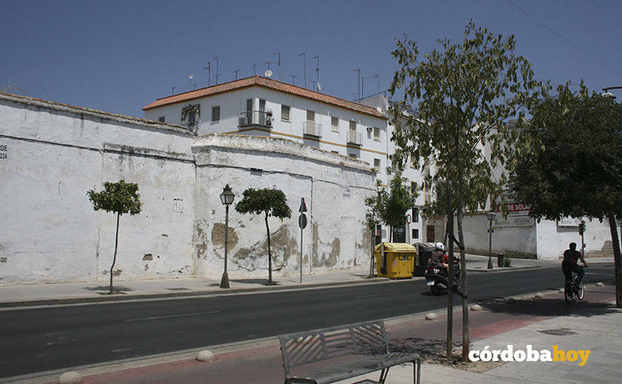 Plataforma por Córdoba alerta del estado de numerosos árboles por falta de riego