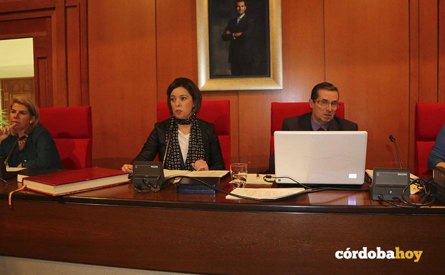 El Pleno aprueba la creación del Imtur que se encargará de la gestión turística de la ciudad