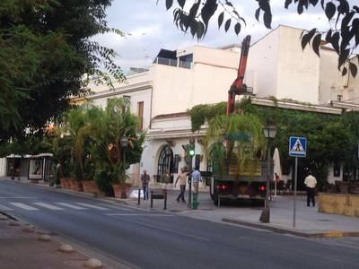 Urbanismo retira de la calle 80 bases de sombrilla, 15 mesas y 30 macetones (DIARIO DE CÓRDOBA)