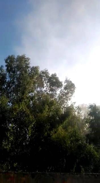 Una nueva nube de polvo sobrevuela Cosmos