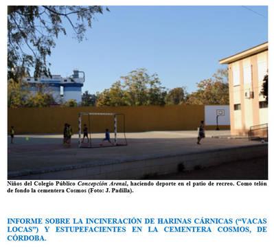 """INFORME SOBRE LA INCINERACIÓN DE HARINAS CÁRNICAS (""""VACAS LOCAS"""") ."""