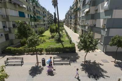 Advierten del riesgo de caída de árboles en Parque Figueroa