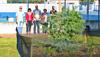 Experiencia piloto de gestión de jardines en La Fuensanta