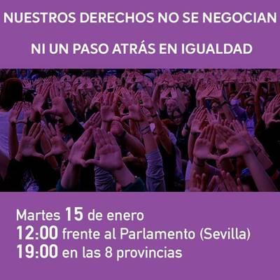 Movimientos sociales, sindicatos y partidos se suman a la protesta feminista del 15E