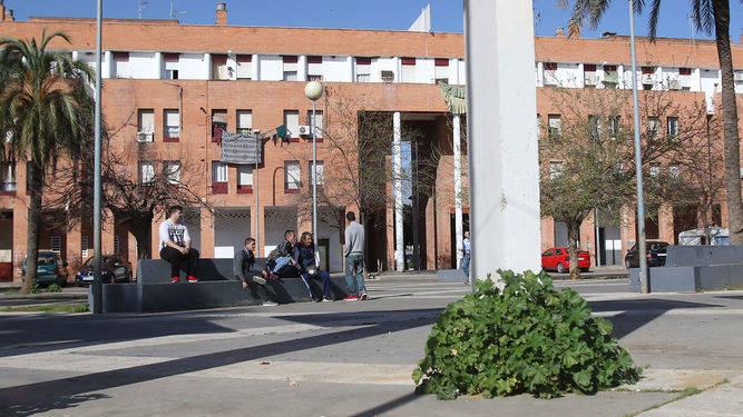 grupo-jovenes-conversa-plazas-Palmeras_1189391188_