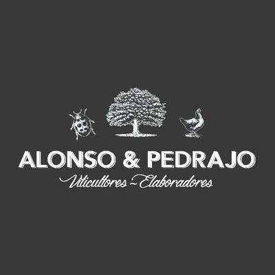 Alonso & Pedraja