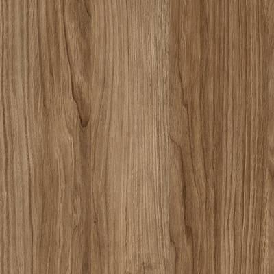 Etna Oak