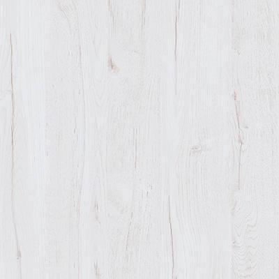 Roble albino