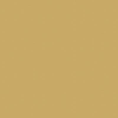 Amarillo Dijon