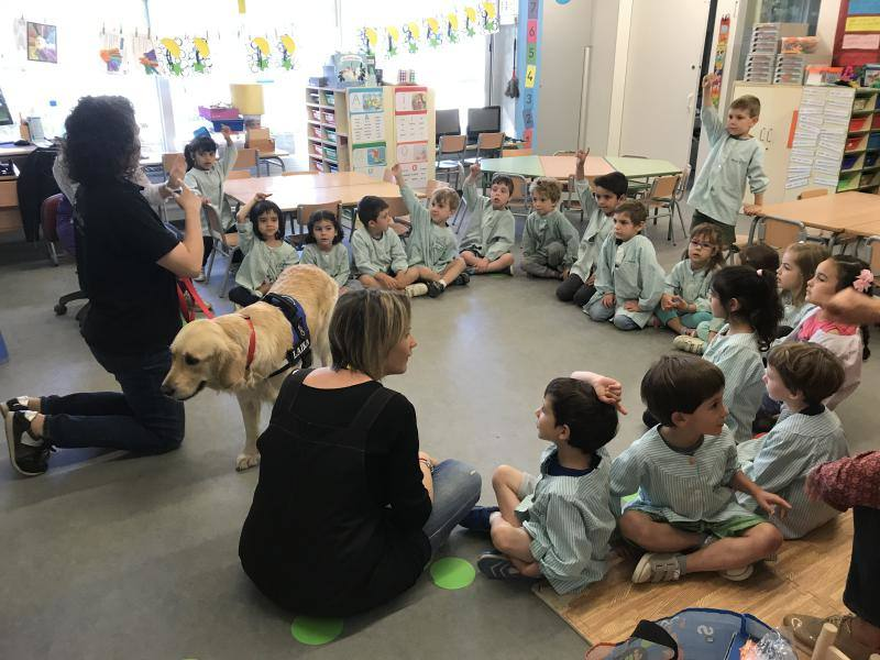 LA LAIKA VISITA LES CLASSES DE P4