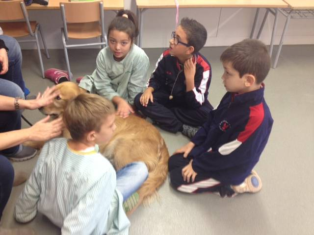 "EDUCATION animal assisted Session 1 15/16 Celebrating ""The Chestnut"""