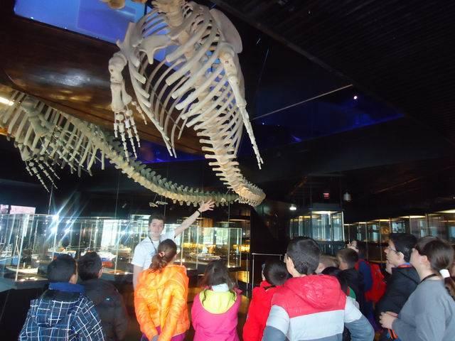 Euskadi 2016. Visita Aquarium de Sant Sebastià