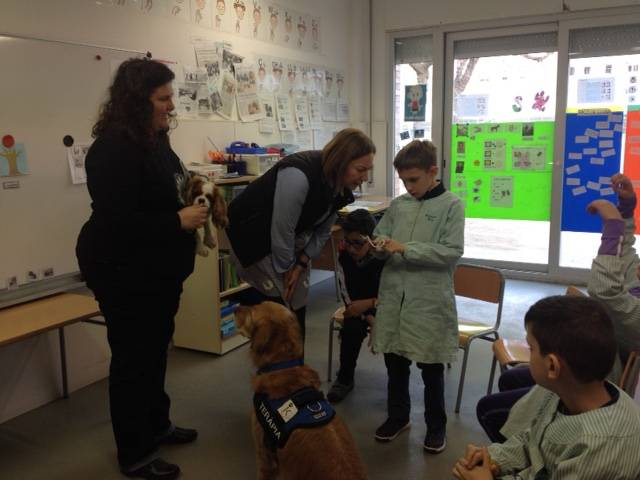 EDUCATION animal assisted Session 5 15/16 winter arrives !!!