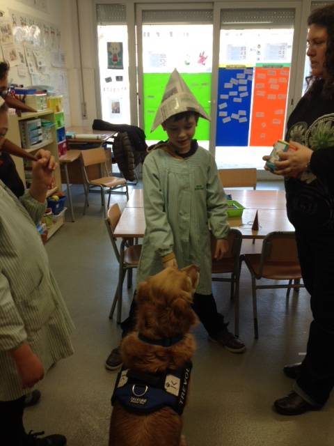 EDUCATION Animal Assisted 15/16 Session 7 Carnival !!