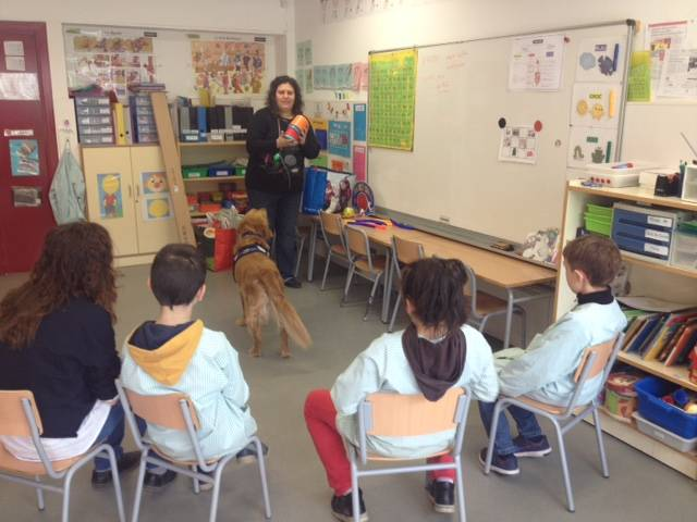 EDUCATION Animal Assisted 15/16 Session 8 We create together