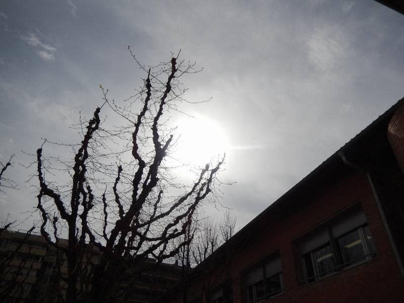 Observació eclipsi Parcial de Sol