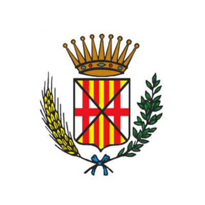 Consell Comarcal Cerdanya