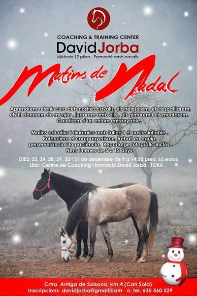 MATINS DE NADAL AMB ELS CAVALLS