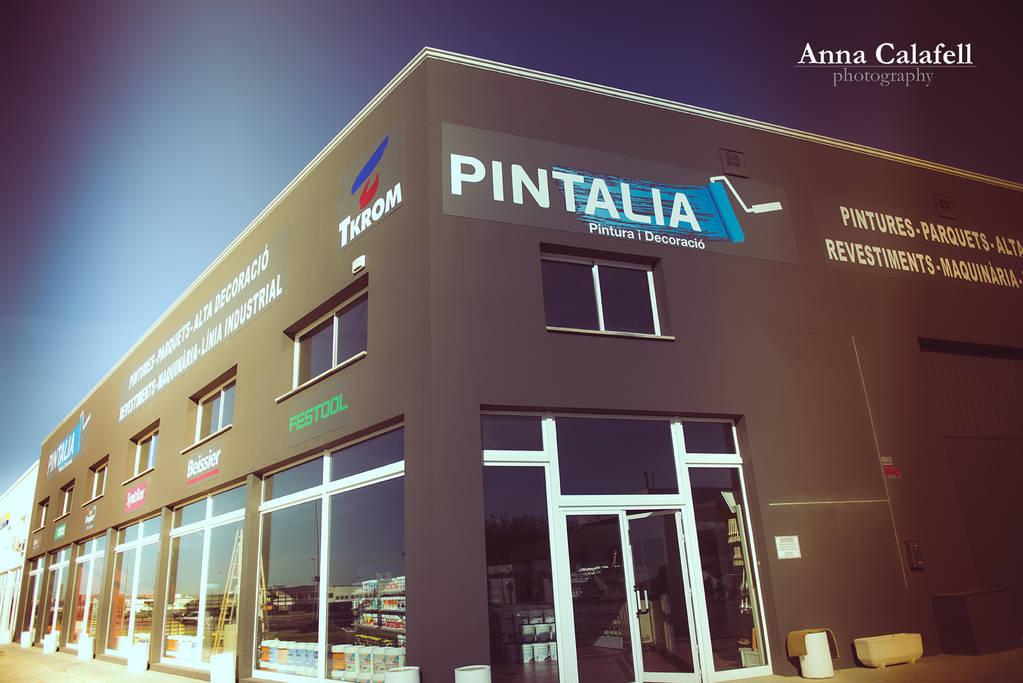 Pintalia ACP_3125_.jpg