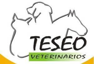 Teseo Veterinarios