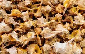 Caracoles de mar con vinagreta