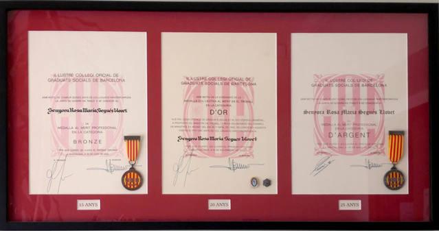 Medalles al mèrit professional pels 15,20 i 25 anys de col.legiació com a Graduat Social