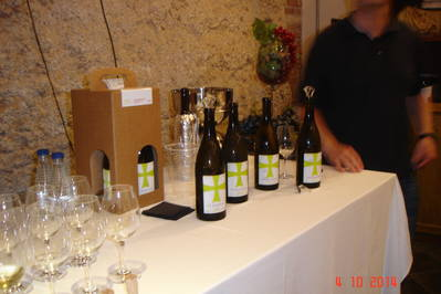 SUMMARY OF TASTE OF SAN JOANNES 08/10/2014