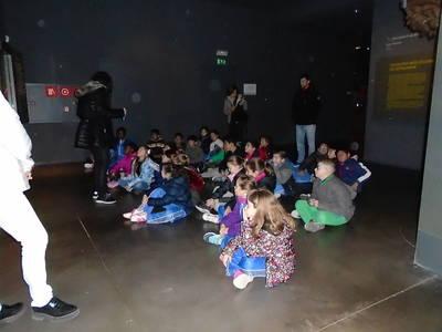 Cicle mitjà al museu de Lleida