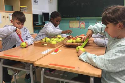 AGENDA 21 Escolar i Escola verda
