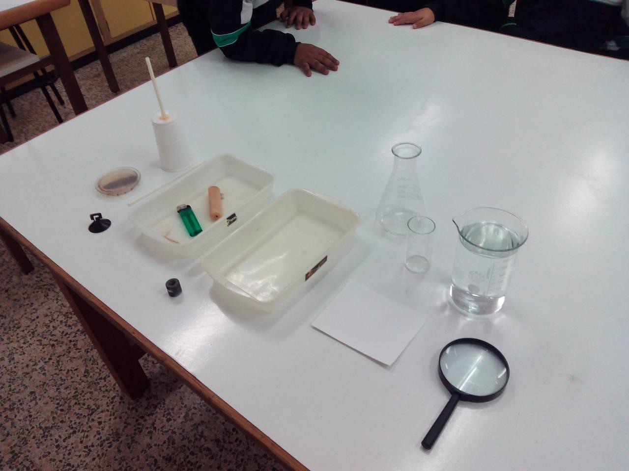 Visita al laboratori (2n)