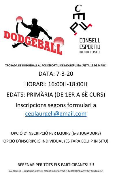 TERCERA  TROBADA DE DODGEBALL
