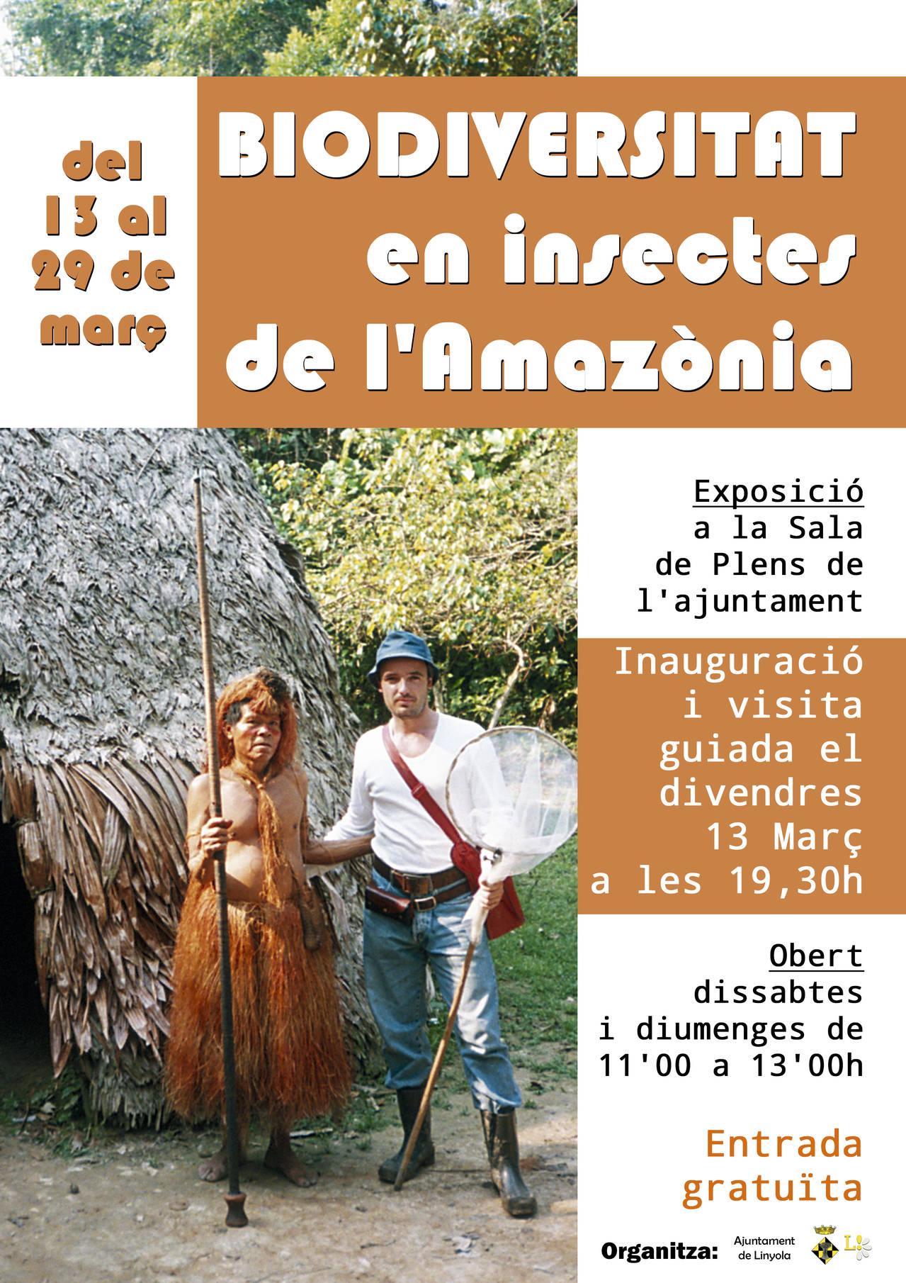 BIODIVERSITAT EN INSECTES DE L'AMAZÒNIA