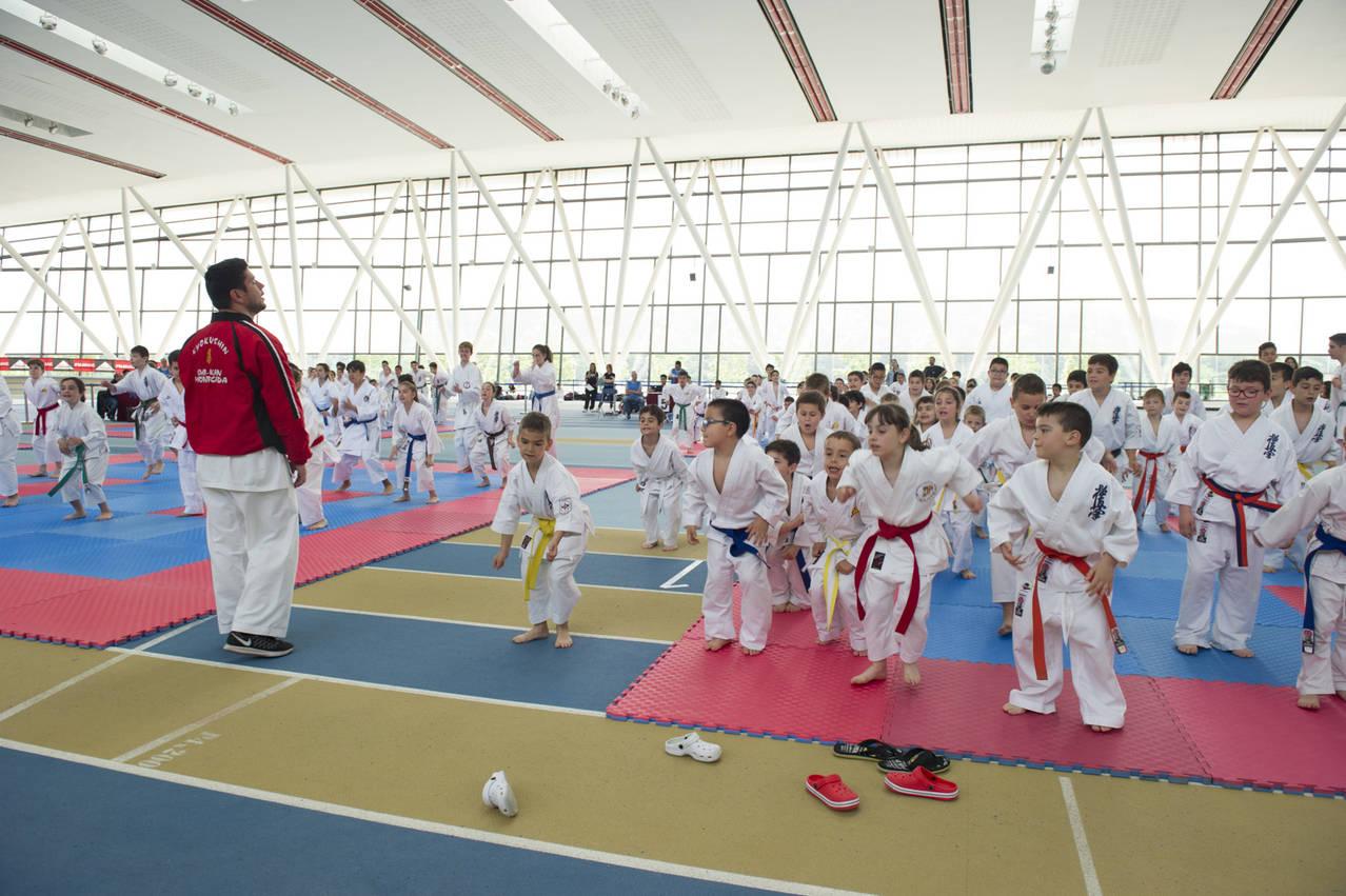 Final Comarcal II de Karate