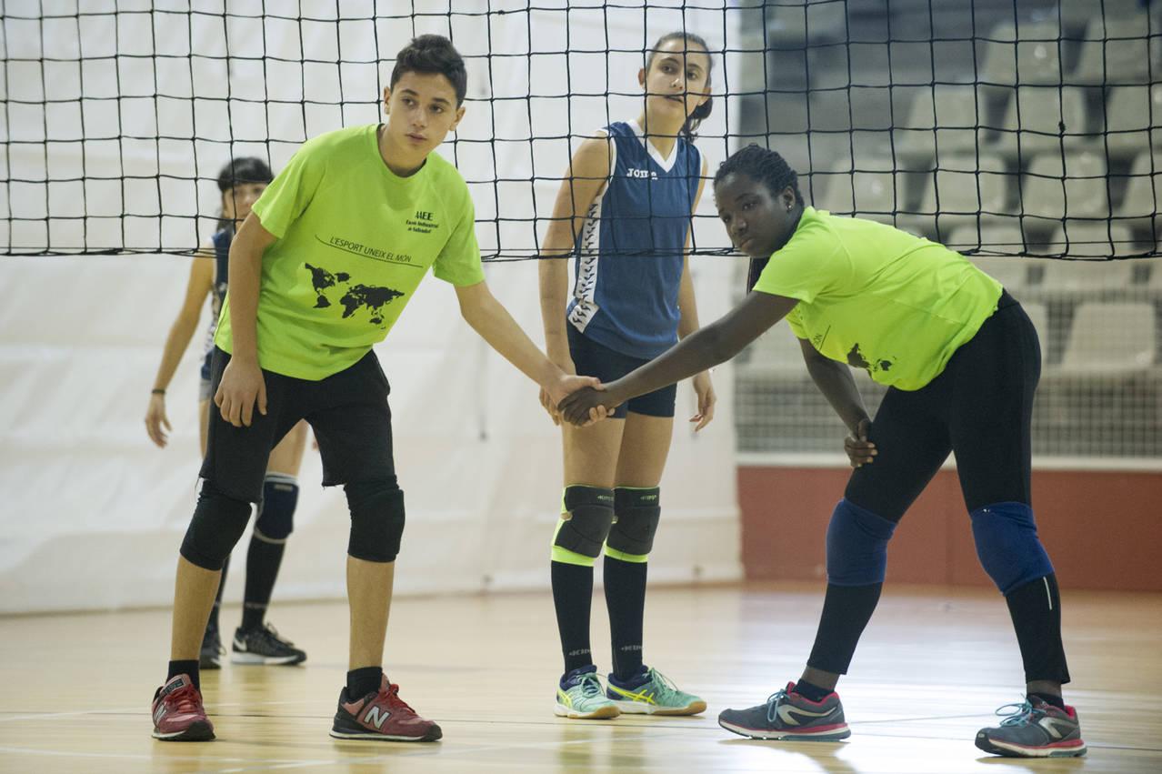 Reunió específica de voleibol