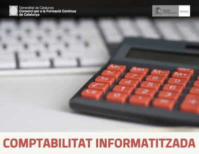 CONTABILIDAD INFORMATIZADA (SUBVENCIONADO)