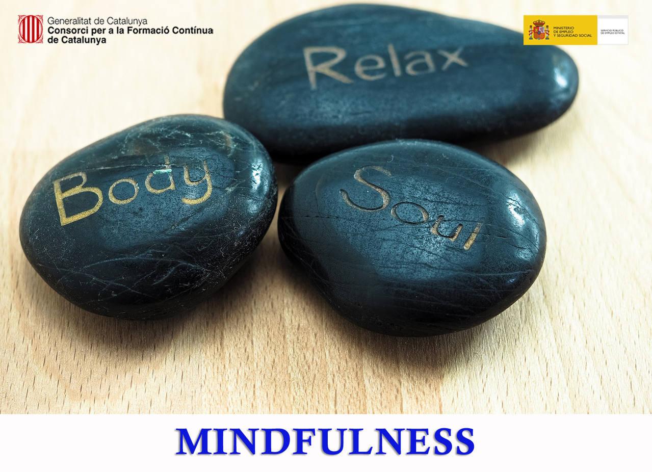 MINDFULNESS (SUBVENCIONAT)