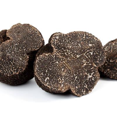 Black Truffle Melanosporum