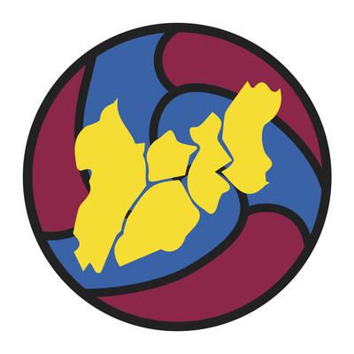 Federació Penyes FCB Lleida Sud