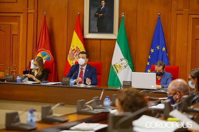 El Pleno acuerda consensuar con los vecinos y colectivos un plan para reactivar el casco histórico