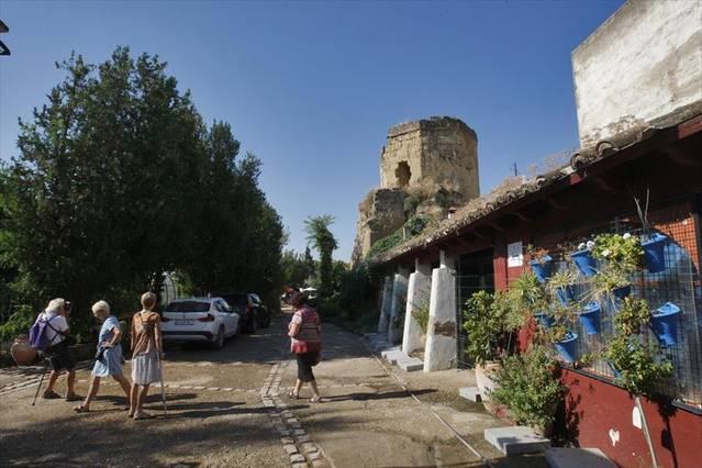 El Alcázar Viejo plantea que la huerta de Caballerizas tenga uso vecinal